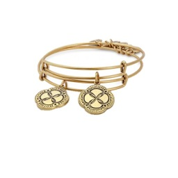 Alex & Ani Daughter Connection